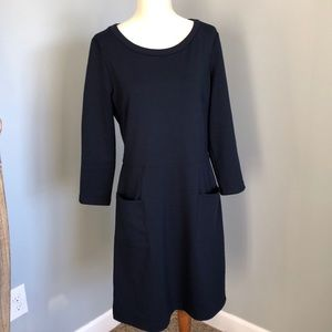 Gap Navy Shift Dress